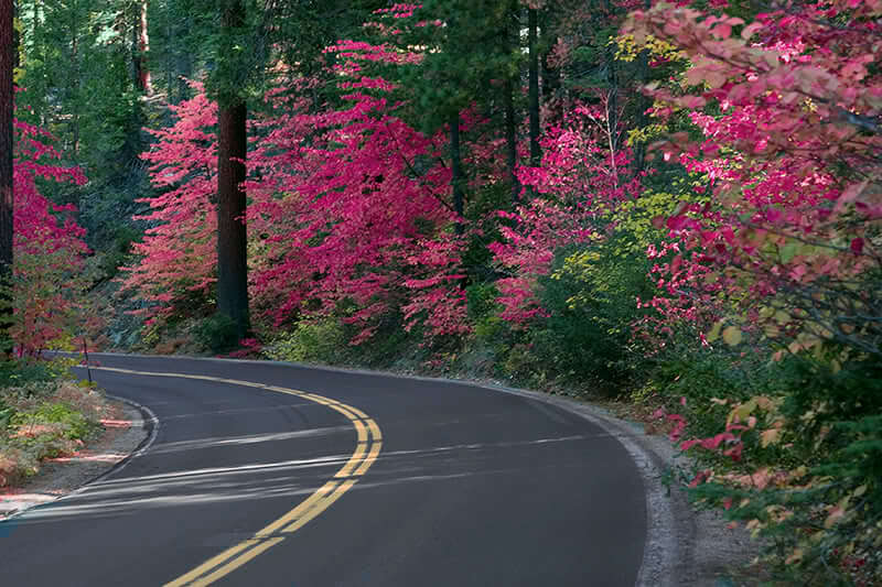 Roads and Maps - Pine Mountain Lake